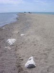 The Point at Pelee